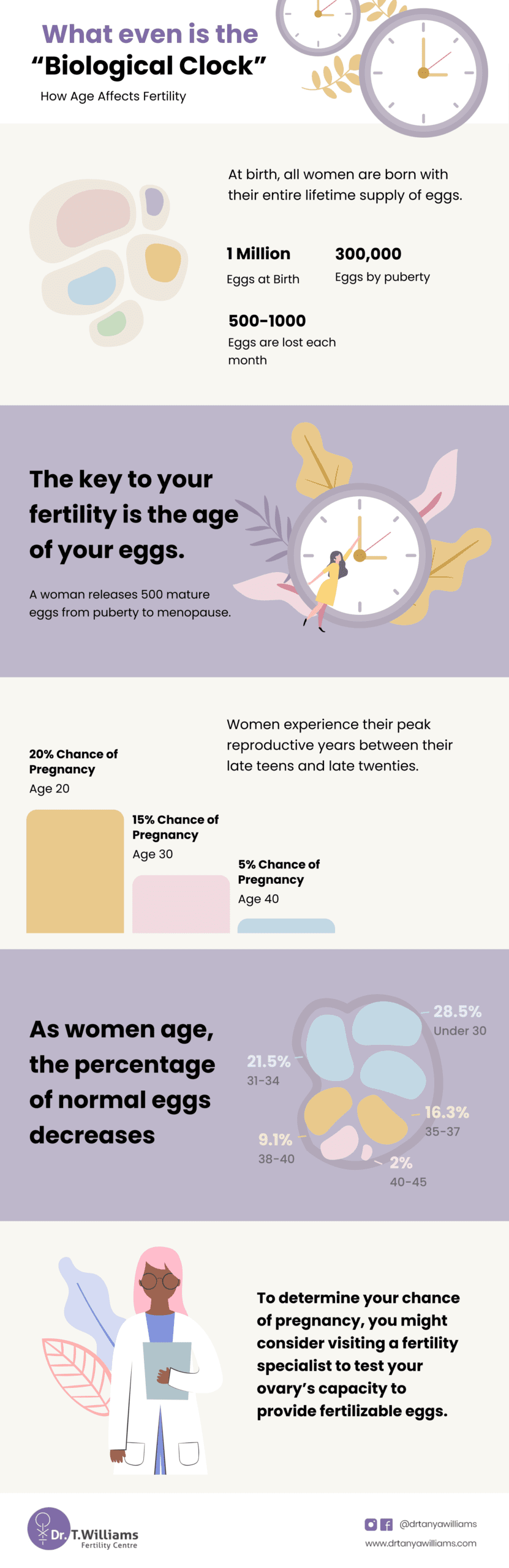 infertility infographic what is biological clock female fertility age